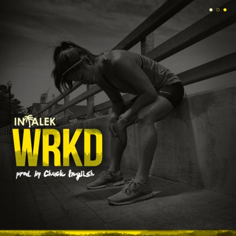 Intalek WRKD